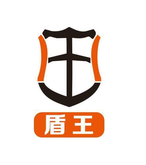 深圳盾王科技有限公司