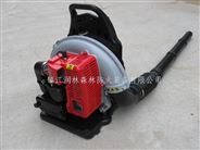 镇江润林EB650背负式风力灭火机