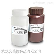 组氨酸标签 Ni镍-IDA树脂
