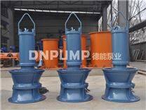 大口径潜水轴流泵订做厂家