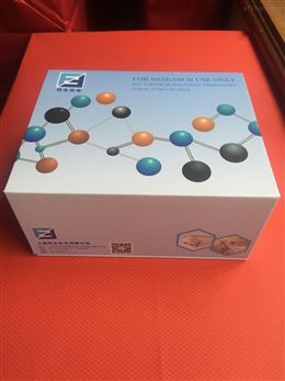 ANGPT2 elisa检测试剂盒售后服务
