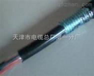ZR-HYA53铠装阻燃通信电缆