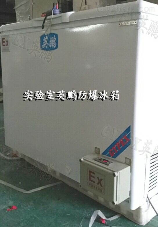 丽水市卧式防爆冰柜200L