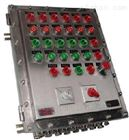 BXK系列不锈钢防爆控制柜