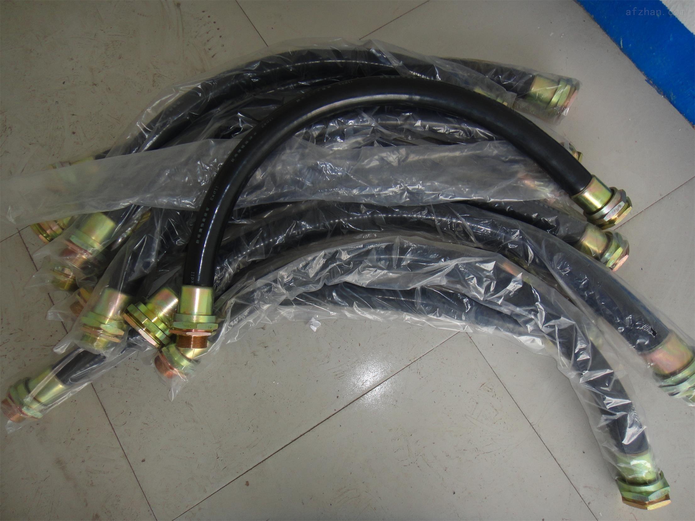 防爆挠性软管BNG-DN25*700G1