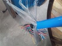 DJVP2VR仪表信号软电缆