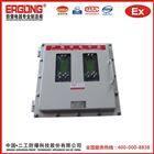 BXK灌装机防爆控制箱