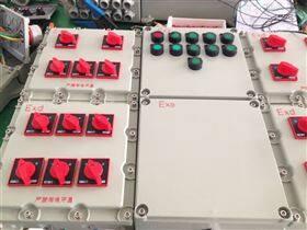 防爆配电箱BXD51-8/K100-XX