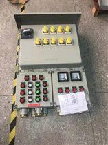 BXM-户外防爆照明动力配电箱移动式