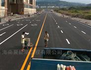 海口|三亚|公路交通|交通道路|停车位画线