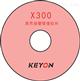 x300报警处理软件