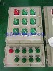 BXMD-6K/100防爆照明/动力配电箱厂家直销