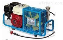standard正压式呼吸器充气泵