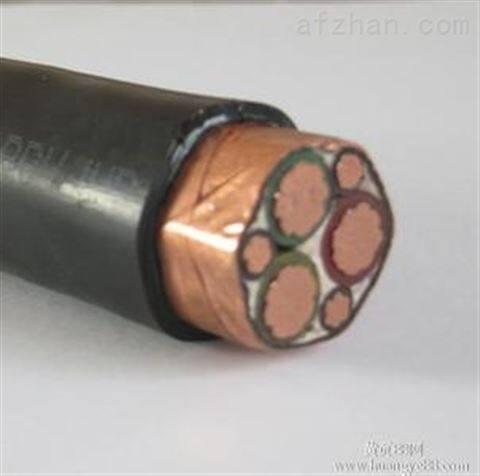 耐火电缆,NH-VV22铠装消防电缆,到货快