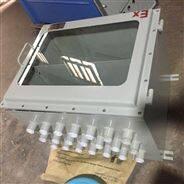 攝像機組合防爆機柜 多媒體防爆網絡機柜