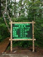 桂林旅游景区在线负氧离子氧含量分析仪