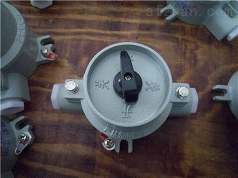 化工厂SW-10/220V/380V防爆照明开关
