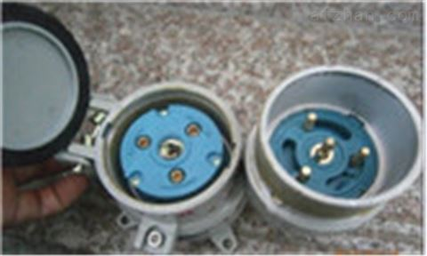 BCX51-32/380防爆插销带插头