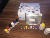 Cortisol ELISA检测试剂盒品牌