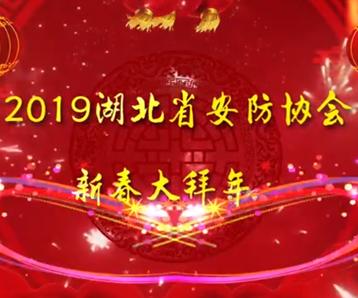 2019年江西省安防协会新春大拜年
