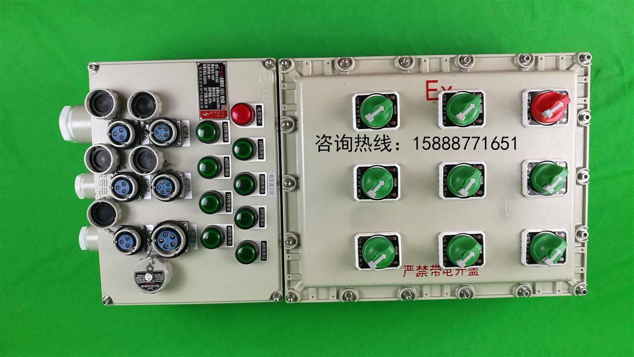 防爆检修电源插座箱 照明配电动力箱